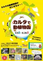 カルタ動植物園_03